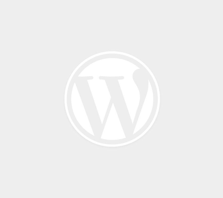 izrada sajta u WordPress-u