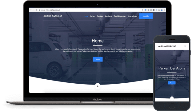 funkcionalan web sajt