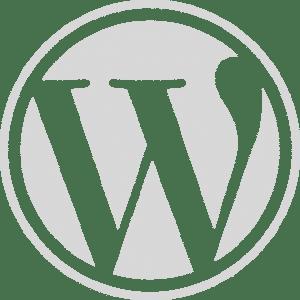 Sta je WordPress web sajt sajtic Beograd Srbija